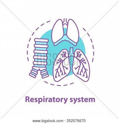 Respiratory System Anatomy Concept Icon. Pulmonology Idea Thin Line Illustration. Healthcare. Human
