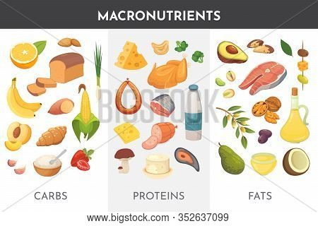 Macronutrients Vector Illustration. Main Food Groups : Proteins, Fats And Carbohydrates. Dieting, He