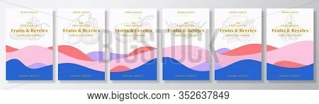 Aroma Candle Vector Labels Template Bundle. Fruits And Berries Scents Collection Advert Design. Sket