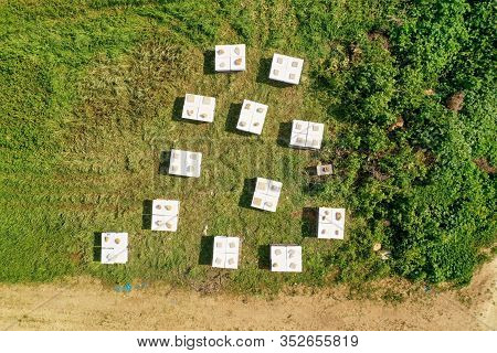 Bee Hive Boxes In A Green Field.