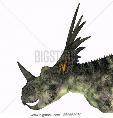Styracosaurus Dinosaur Head 3d Illustration - Styracosaurus Was A Herbivorous Ceratopsian Dinosaur T