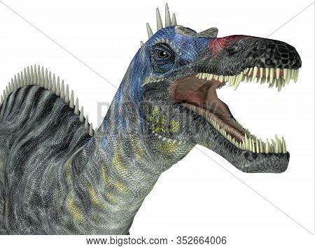 Suchomimus Dinosaur Head 3d Illustration - Suchomimus Was A Theropod Carnivorous Dinosaur That Lived
