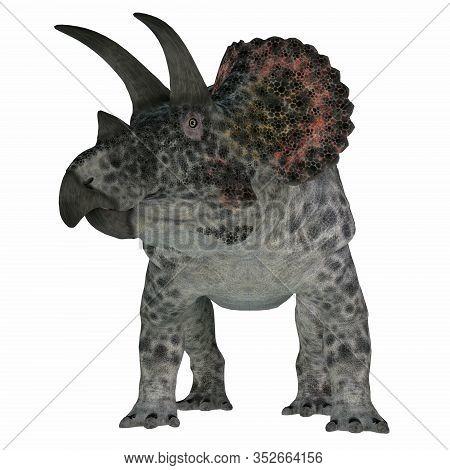 Triceratops Dinosaur On White 3d Illustration - Triceratops Was A Herbivorous Ceratopsian Dinosaur T