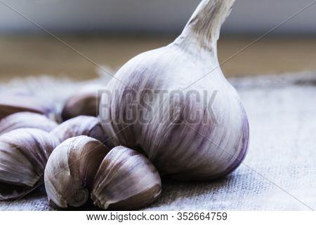 Garlic. Garlic Cloves And Garlic Bulb On Vintage Burlap . Garlic Bulbs With Cloves On Burlap Backgro
