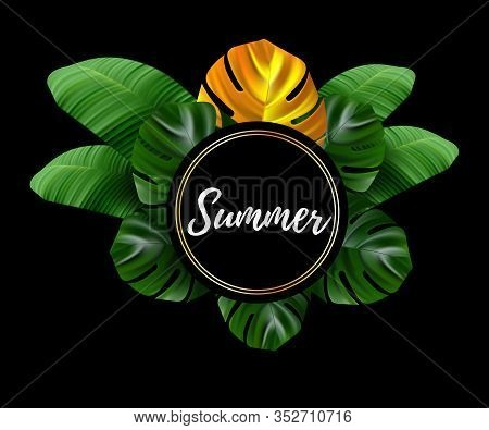 Tropical Leaves. Jungle Background Flower And Palm. Vector Jungle Illustration. Green Tropical Beach