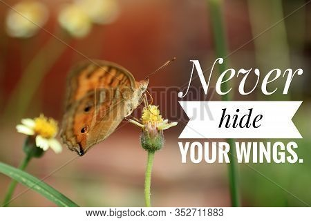 Inspirational Quote - Never Hide Your Wings. Always Show Them. They Are The Strength That You Have B