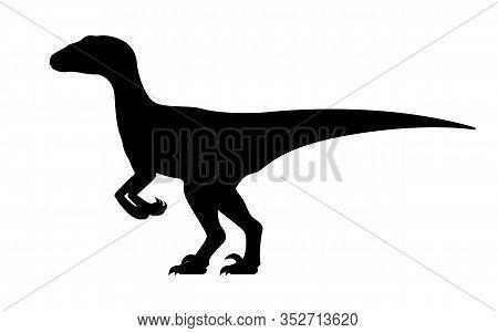 Velociraptor Silhouette. Vector Illustration Black Silhouette Raptor Dinosaur Isolated On White Back