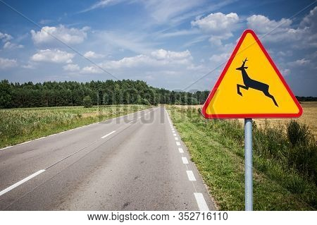 The Deer Crossing Warning Sign. Dangerous Accident May Happen Even On Empty Road. Be Careful Animals