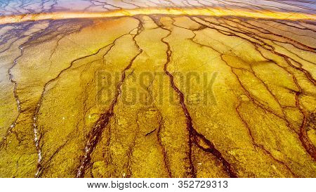 The Colorful Bacterial Mats Of The Grand Prismatic Spring In Yellowstone National Park, Wyoming, Uni