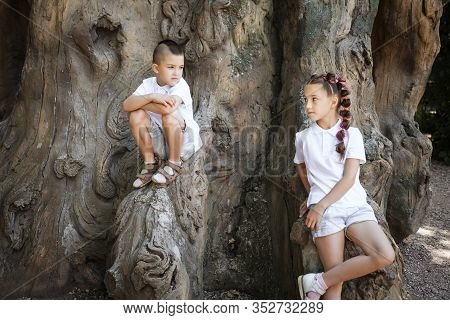 Pretty Lovely Little Girl With Pigtails Leaning On The Tree And A Boy Wearing White Shirt Sitting On