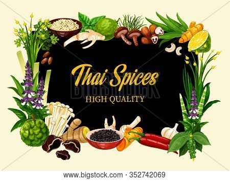 Thai And Herbs, Cooking Herbal Seasonings And Culinary Condiments. Asian Lemongrass, Kaffir Lime And