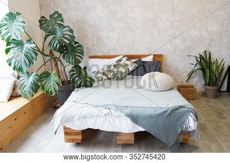 Cute Pillows On Wooden Self-made Bed In Light Bedroom Decorated With Plants.