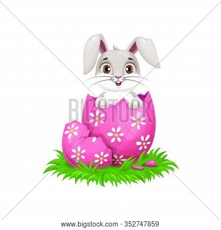 Cartoon Easter Bunny And Egg Holiday Egghunting. Cute Rabbit Or Bunny Animal Hatched From Painted Eg