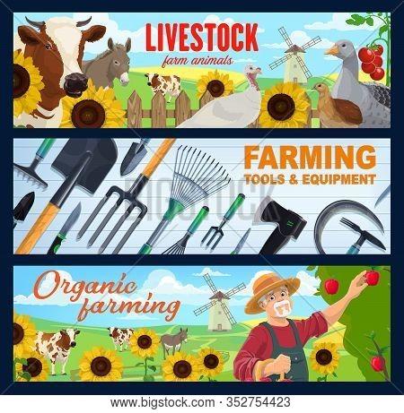 Farm Animal, Farmer, Farming Tool And Equipment, Vector Banners Of Agriculture Design. Farm Field An