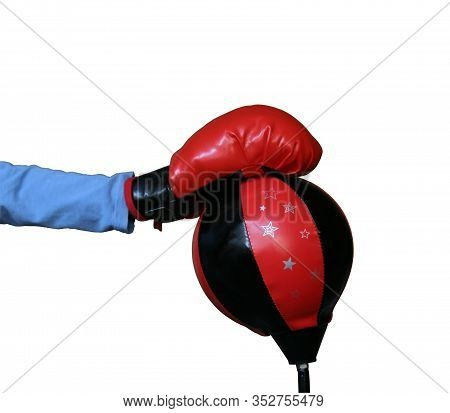 Kid Boxing Training. Boxing Glove And Boxing Sack.