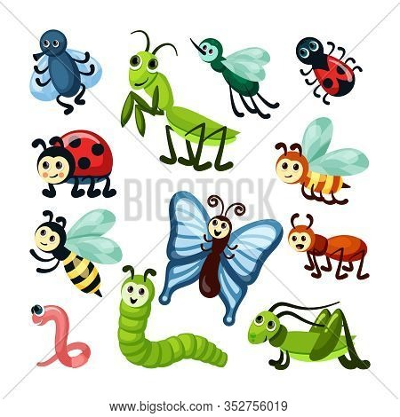Insects. Fly Bugs Nature Wildlife Beautiful Butterfly Grasshoppers Snails And Caterpillars. Vector C