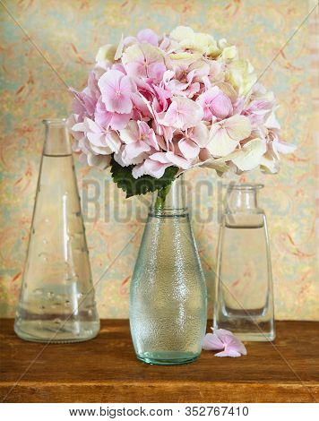 Gentle Pink Hortensia Or Hydrangea Flower In Glass Vase Placed On Wooden Desk Next To Filled With Wa