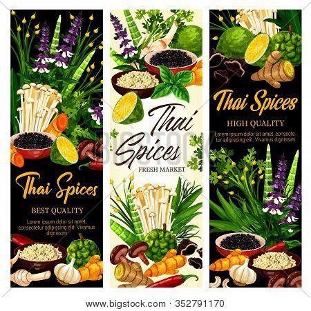 Thai Cuisine Spices And Cooking Herbs, Farm Market Seasonings And Herbal Flavorings. Thai Cuisine Ka