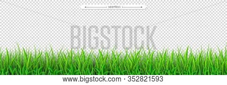 Green Grass Seamless Border. Decoration Element Of Summer Spring And Easter Design Isolated On Trans