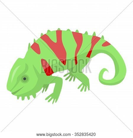 Red Green Chameleon Icon. Isometric Of Red Green Chameleon Vector Icon For Web Design Isolated On Wh