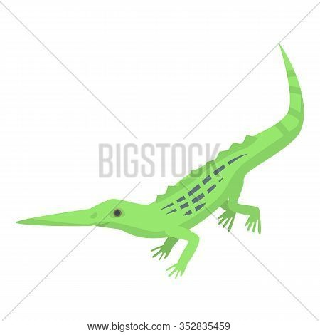 Long Nose Lizard Icon. Isometric Of Long Nose Lizard Vector Icon For Web Design Isolated On White Ba