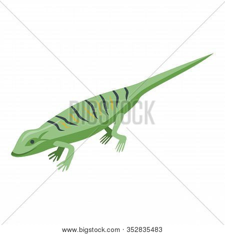 Classic Green Lizard Icon. Isometric Of Classic Green Lizard Vector Icon For Web Design Isolated On