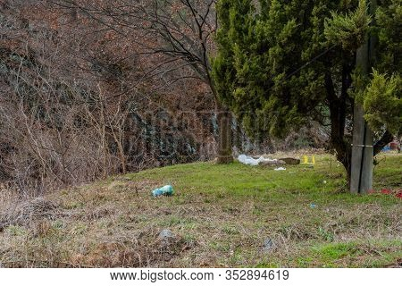 Trash Discarded Under Tree