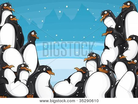 Penguins backgroun horizontal