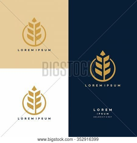 Luxury Grain Wheat Logo Concept, Agriculture Wheat Logo Template Vector Icon