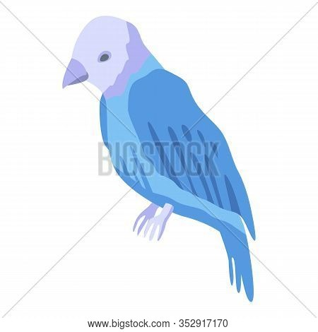 White Blue Parrot Icon. Isometric Of White Blue Parrot Vector Icon For Web Design Isolated On White