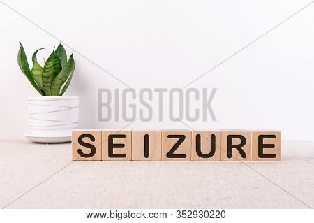 Word Seizure Made With Wood Building Blocks On A Light Background