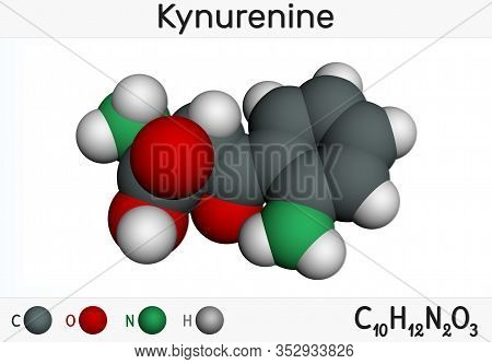 Kynurenine, L-kynurenine, C10h12o3n2 Molecule. It Is A Metabolite Of The Amino Acid L-tryptophan Use