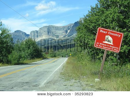 Bear Country Warning Sign