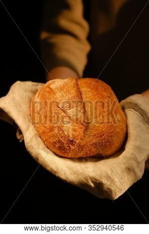 Woman Holding Loaf Of Bread. Bakery Employee Holding A Freshly Baked Loaf Of Bread. Working With Bre