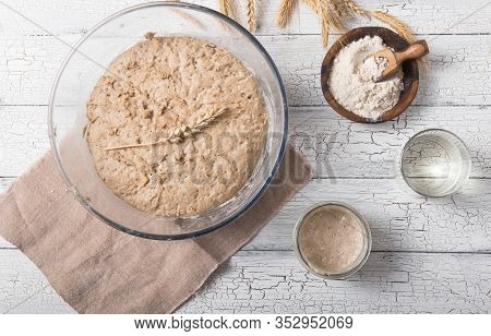 The Leaven For Bread Is Active. Starter Sourdough ( Fermented Mixture Of Water And Flour To Use As L