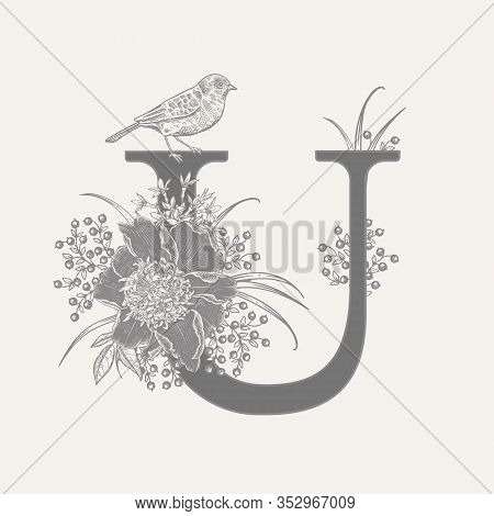 Letter U, Luxury Peonies, Decorative Herbs, Cute Flowers And Bird Isolated. Vector Decoration. Black