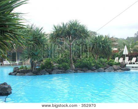 Island In The Pool