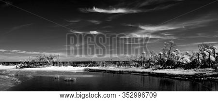 Black and white infrared photograph of the Atlantic coast of South Carolina, abstract surreal landscape.