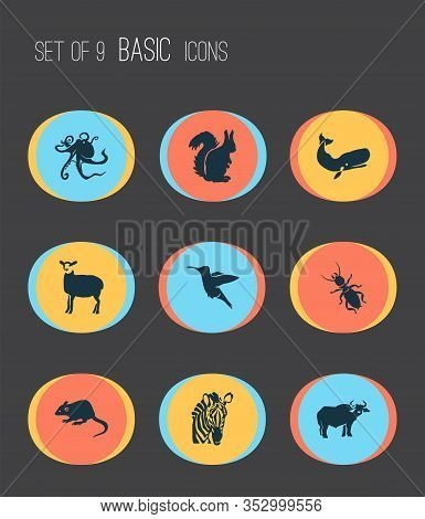 Fauna Icons Set With Thermit, Octopus, Squirrel And Other Chipmunk Elements. Isolated Vector Illustr