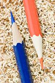 Blue and red wooden pencils in pencil shaving poster
