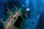 divers explore Marcha Fushi wreck, South Ari Atoll, Maldives poster