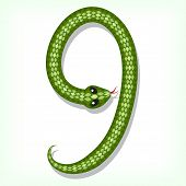 Font made from green snake. Digit 9 poster