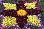 Rose petals rangoli decoration Ikebana in beautiful colours poster