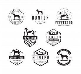 Set Of Dog Vintage Logo . Dog Logo .animal Logo Illustration Vintage Vector