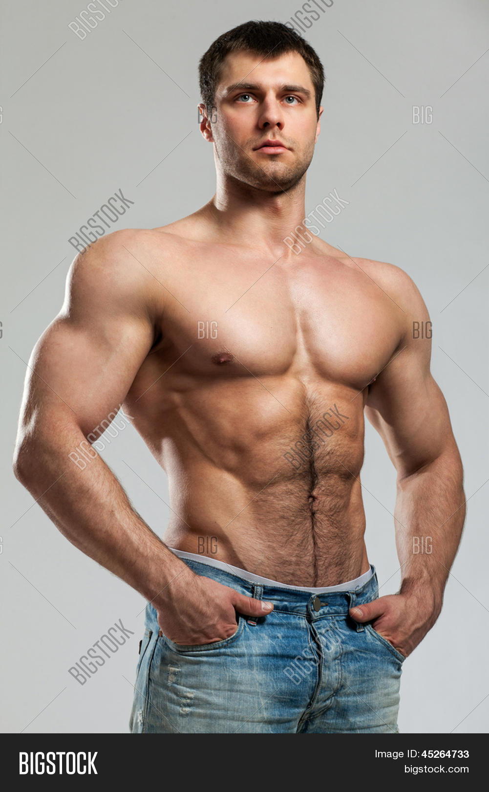 free muscular gay images