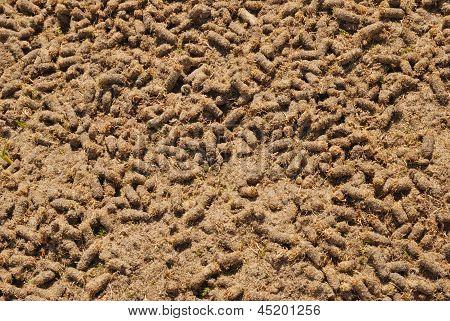 Background Fertilizer