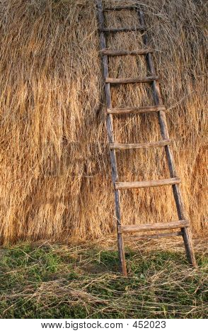 Ladder On Straw