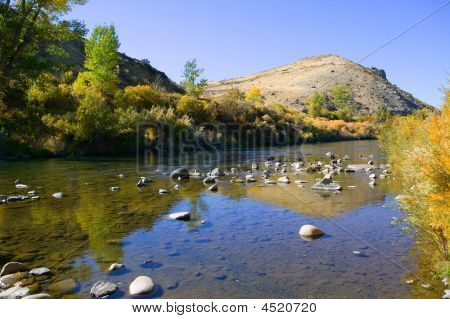 Fall Color Along The Truckee River