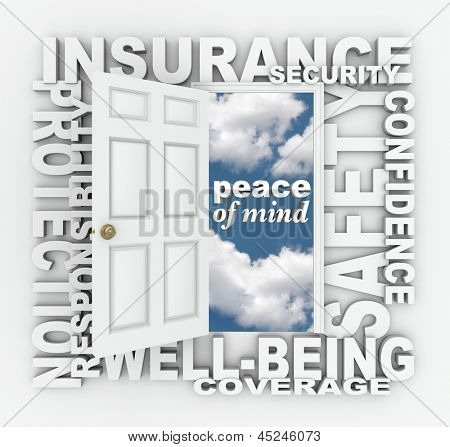 The words Insurance, Security, Protection, Well-Being, Coverage, Confidence and Responsibility to represent the Peace of Mind you get from being insured through an agent or agency