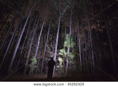 Shadowy Figure In A Forest At Night